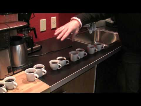 Blind Taste Test: Technivorm vs. Bonavita Coffee Makers