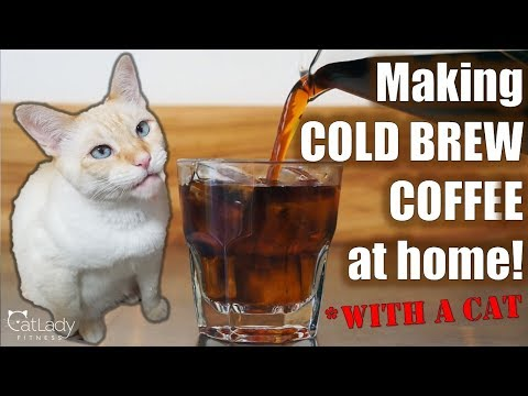 How to make COLD BREW COFFEE in a French Press! (with a cat…) – Cat Lady Fitness