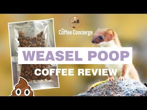 Weasel Poop Coffee Review