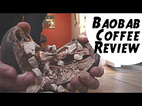Baobab Seed Coffee Substitute – That's Not Coffee! (Review and Recipe)