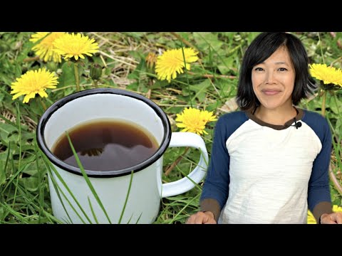 Confederate Army DANDELION COFFEE | Civil War Era Recipe | Hard Times – food from times of scarcity