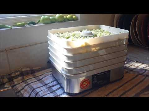 Trying out the Hamilton Beach dehydrator – urban homesteading