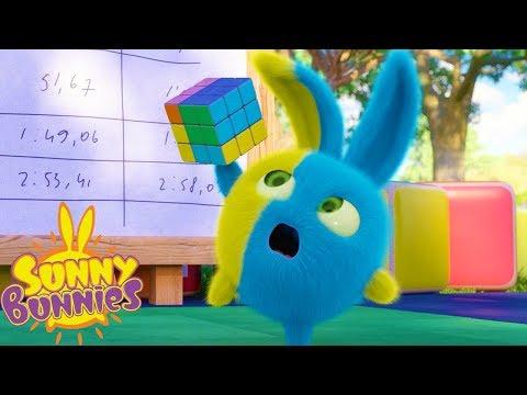 Cartoons for Children | SUNNY BUNNIES – RUBIK'S CUBE | Funny Cartoons For Children