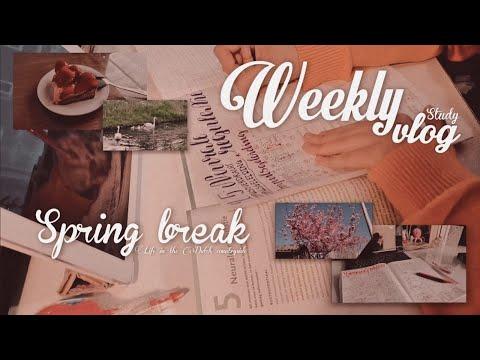 WEEKLY VLOG   1 tuần nghỉ Bunn đã làm gì   first week of spring break, nature & studying   Bunn